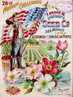 seeds_catalogs-03408 - 037-American Flag, Man, patriotic, Wild Rose, Basket [3297x4369]
