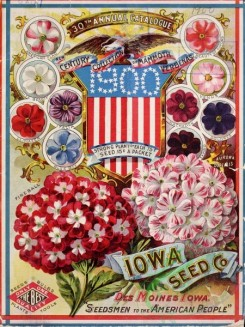 seeds_catalogs-03742 - 082-American flag, USA, patriotic, verbena [3184x4241]