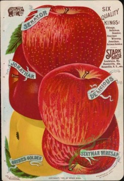 seeds_catalogs-03934 - 005-Apple [3752x5470]