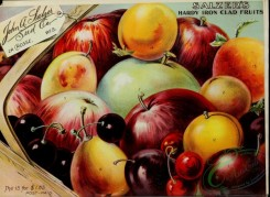 seeds_catalogs-04015 - 086-Fruits in basket, berries, Apple, Cherry, tag [3736x2734]