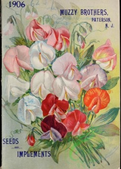 seeds_catalogs-04368 - 070-Sweet Pea [3462x4836]