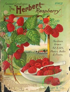 seeds_catalogs-05747 - 027-Spoon, Plate, Raspberry [2368x3093]