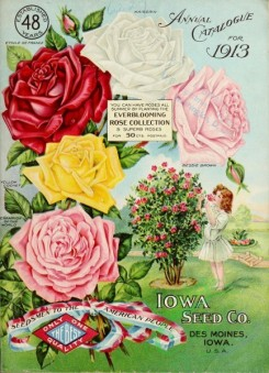 seeds_catalogs-05898 - 077-Roses, Small Girl smelling flowers, shrub [2530x3503]