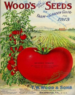 seeds_catalogs-05968 - 052-Tomato, field [2748x3445]
