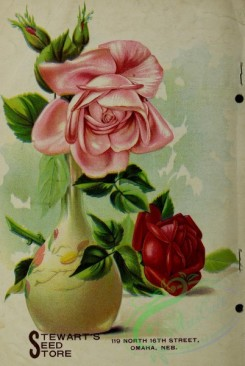 seeds_catalogs-06360 - 042-Roses in vase [2920x4349]