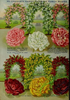 seeds_catalogs-06422 - 104-Flower Arch, Roses [3370x4769]