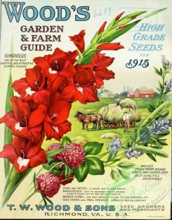 seeds_catalogs-06515 - 086-Gladiolus, Horse, Cart with grass, farmers, Clover [2679x3408]