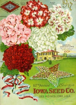 seeds_catalogs-06808 - 068-Phlox, Star Flowerbed, House, tag [2509x3436]