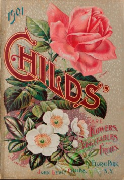 seeds_catalogs-08083 - 012-Roses, Childs