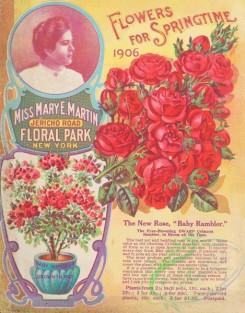 seeds_catalogs-08120 - 001-Roses