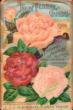 seeds_catalogs-08201 - 001-Roses