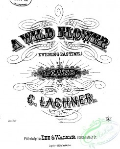 sheet_music_covers-00399 - A Wild flower_ct1882.17574