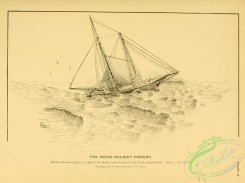 ships-00188 - black-and-white 045