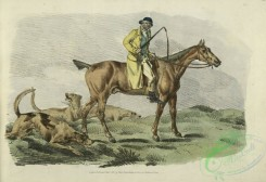 sporting-00018 - 021-Mounted hunter with three hounds running behind