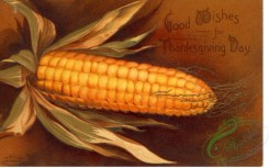 thanksgiving_day_postcards-00003 - 003-Corn Good wishes for Thanksgiving Day [3000x1868]