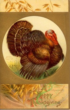 thanksgiving_day_postcards-00034 - 034-Turkey, Round frame, Wheat [1906x3000]