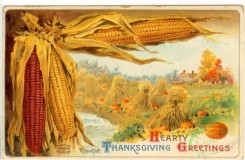 thanksgiving_day_postcards-00042 - 042-Corn, Harvesting, sheaf [3000x1964]
