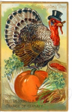 thanksgiving_day_postcards-00165 - 165-Turkey, Pumpkin, sack, boys i feel i'm going to a change of climate [1934x3000]