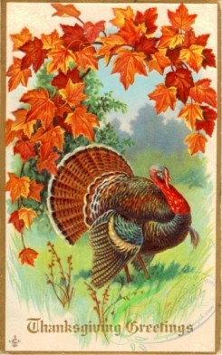 thanksgiving_day_postcards-00178 - 178-Turkey, Leaves [1879x3000]
