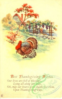 thanksgiving_day_postcards-00223 - 223-Turkey, Our lives are full of blessings, Lying all along our way [1876x3000]