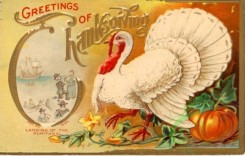 thanksgiving_day_postcards-00359 - 359-Turkey, white, Pumpkin [600x382]