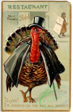 thanksgiving_day_postcards-00434 - 434-Turkey in hat, O yes I'm starred on the bill... [1981x3000]