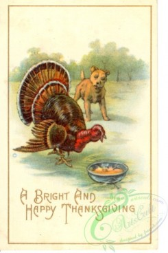 thanksgiving_day_postcards-00442 - 442-Turkey, Dog, plate, A bright and happy Thanksgiving [1998x3000]