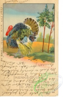 thanksgiving_day_postcards-00463 - 463-Turkey, Thanksgiving greetings to you all [1973x3000]