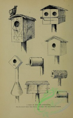 things-00883 - 002-Nest-boxes