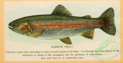 trouts-00140 - Rainbow Trout