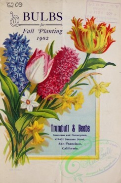 tulips-00238 - 040-Flowers bouquet, Tulips, Hyacinthus, Narcissus, Frame [2849x4295]
