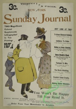 vintage_posters-00686 - 065-New York Sunday journal, 1895