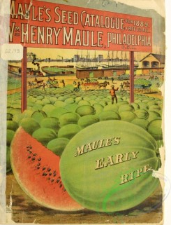 watermelon-00012 - 042-Watermelon, Port