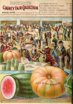 watermelon-00019 - 013-Trading, Market, exhibition, people, Pumpkin, Watermelon, fair
