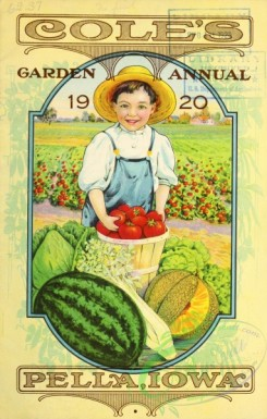 watermelon-00040 - 001-Boy, harvest, watermelon, tomato, muskmelon, field, frame
