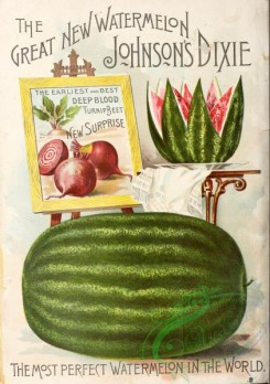watermelon-00041 - 004-Watermelon, painting canvas