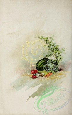 watermelon-00080 - 017-Vegetables, Tomato, Watermelon, Cabbage, Carrot