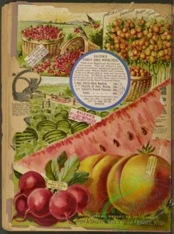 watermelon-00153 - 099-Peaches, Beet, Watermelon, Field, Baskets