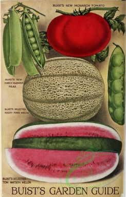 watermelon-00159 - 048-Tomato, Pea, Muskmelon, Watermelon